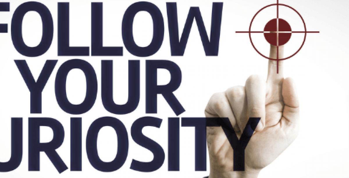 Follow your curiosity motivational poster